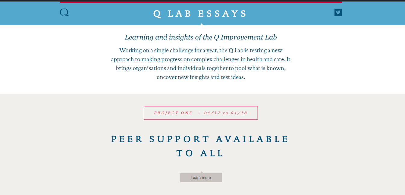 Q Lab essays